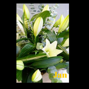 Jan White Lily Bouquet