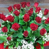 Arrangement of 24 Red Roses